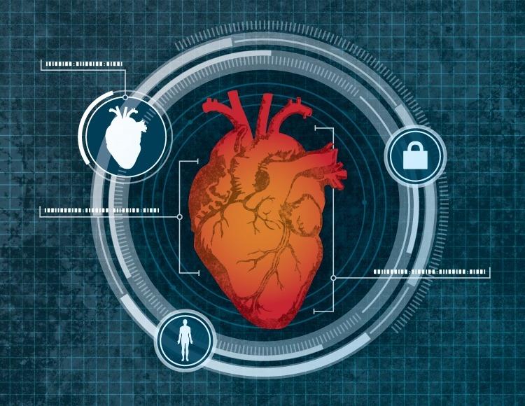 Сердце вместо пальца: будущий метод биометрической идентификации личности
