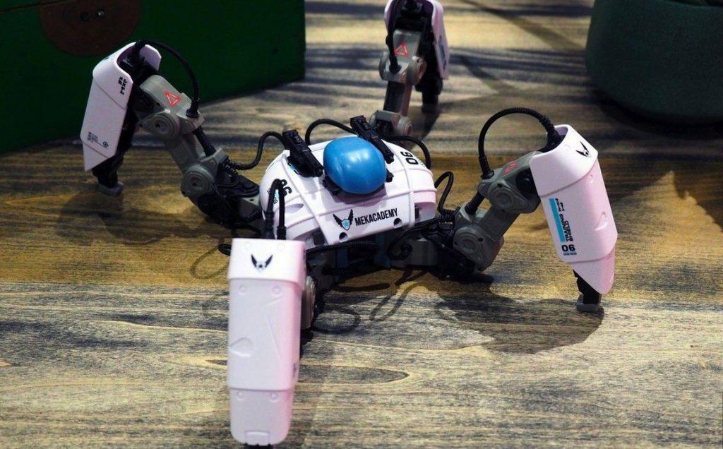 Робот-паук Reach Robotics